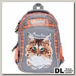 Школьный рюкзак Orange Bear V-52 Cat серый